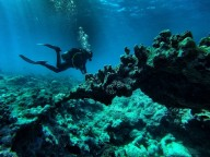 Medes_Islands_Diving