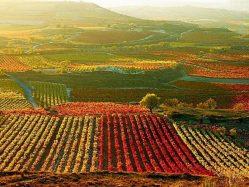 La_Rioja